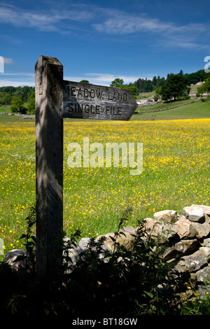Wild flower meadow near Healaugh, Swaledale, Yorkshire Dales National Paerk - Stock Photo