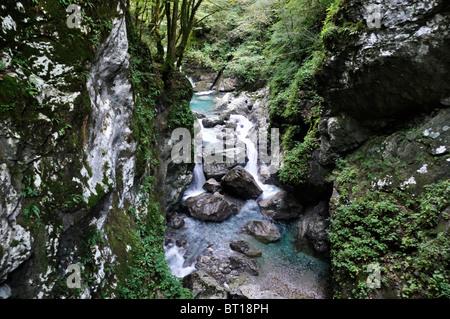 Tolminka river, Triglav National Park, Julian Alps, Slovenia, September 2010 - Stock Photo
