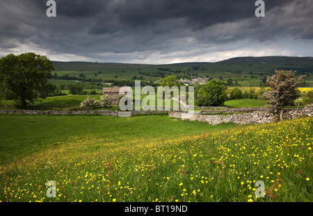 Wild Flower Meadow above Wensleydale in the Yorkshire Dales National Park with Askrigg across the valley - Stock Photo