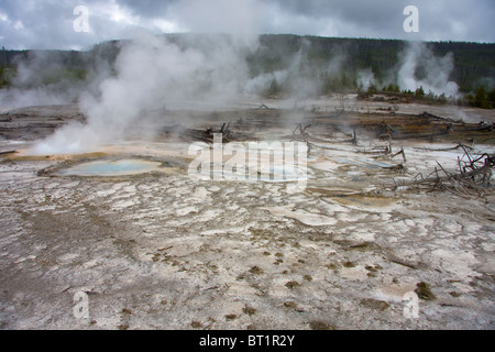 Hot springs and steam vents at Norris Geyser Basin, Yellowstone National Park, USA - Stock Photo