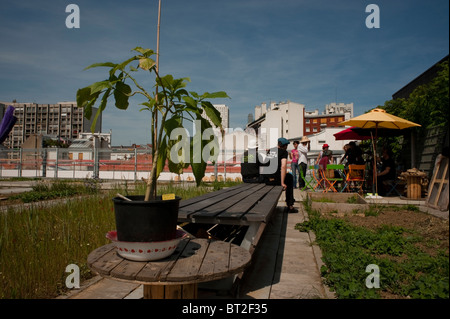 Paris, France, People Visiting Green Roof, Community Garden on New Low-income Public Housing Estate Building - Stock Photo
