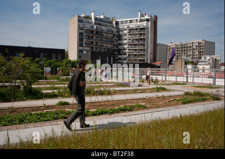 Paris, France, Man Visiting Community Garden on New Low-income Public Housing Building Estate - Stock Photo