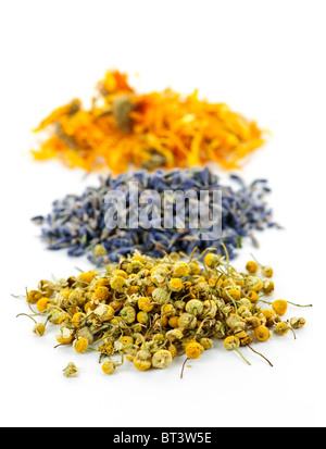 Piles of dried medicinal herbs camomile, lavender, calendula on white background Stock Photo