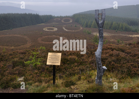 Point of Resolution artwork, Minch Moor, Southern Uplands, Scotland - Stock Photo