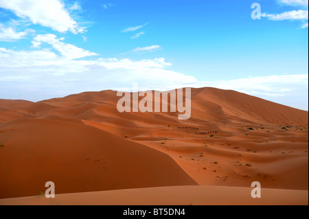 Sand dunes and desert scenery at first light of day in Erg Chebbi - Stock Photo