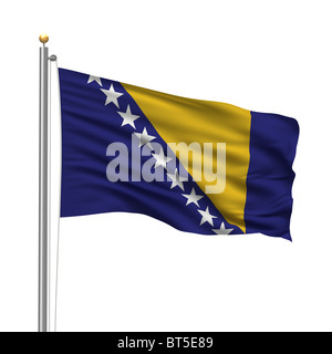 Flag of Bosnia and Herzegovina - Stock Photo