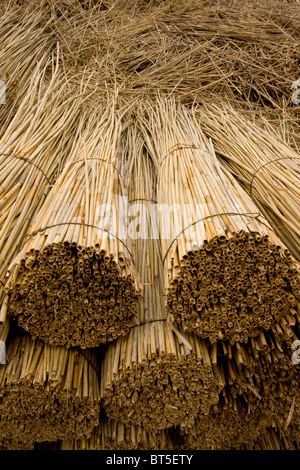 Reed-cutters yard on the plains of eastern Hungary, Hortobagy National Park, east Hungary - Stock Photo