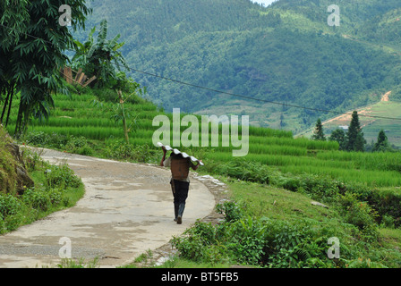 Man carrying corrugated asbestos in the mountains near Sapa, Vietnam - Stock Photo