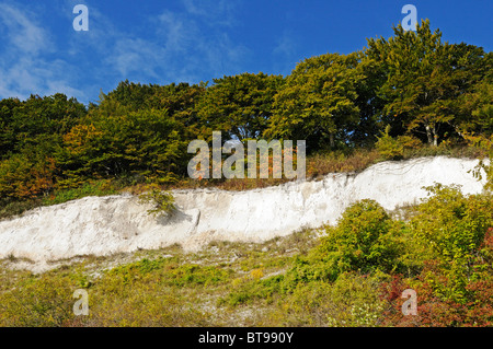 Chalk stratum in the chalk cliffs in the Jasmund National Park, Jasmund peninsula, Ruegen Island, Mecklenburg-Western - Stock Photo