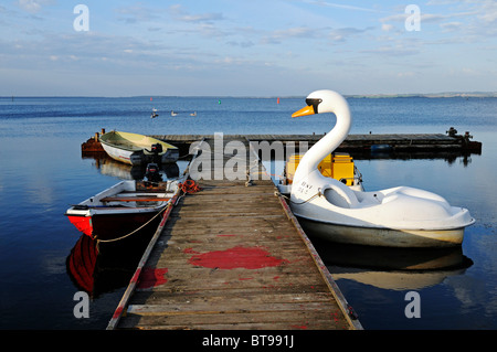 Pedal boat in the form of a swan in the evening light, Ralswiek at the Grosser Jasmunder Bodden, Ruegen island - Stock Photo