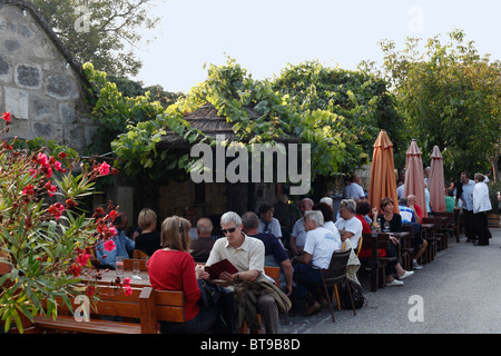 Tavern in the Kellergasse alley in Purbach am Neusiedler See, Lake Neusiedl, Burgenland, Austria, Europe - Stock Photo