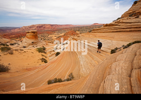 Tourist hiking in Coyote Buttes North, Paria Canyon-Vermilion Cliffs Wilderness, Utah, Arizona, USA - Stock Photo