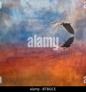 Painterly and Textured image of a Black Crowned Night Heron flying above the fiery depths into the dreamlike clouds - Stock Photo