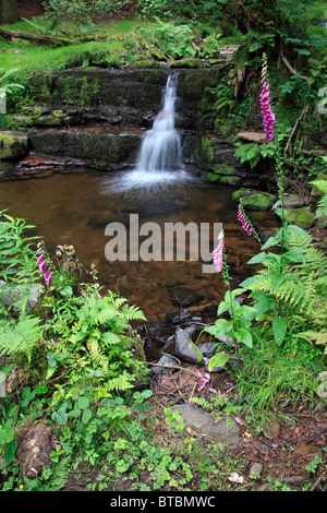 Blaen y Glyn Waterfalls, Brecon Beacons, Wales, UK - Stock Photo