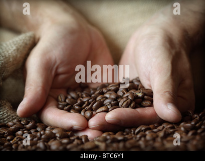 Hand holding coffee beans - Stock Photo