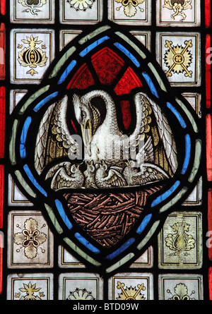 A stained glass window by A. L. Moore depicting The Pelican in Her Piety, Withiel Florey Church, Somerset - Stock Photo