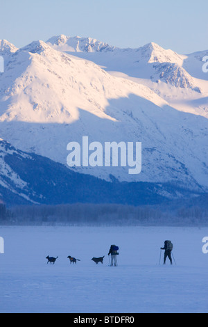Two cross-country skiers with dogs ski across a lake along Seward Highway with snowcovered mountains in the background, - Stock Photo