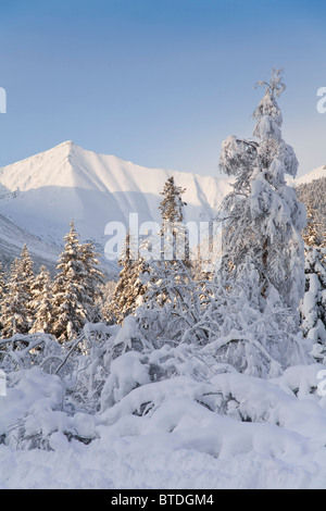 Winter scenic of snowcovered Spruce trees and the Chugach Mountains near Girdwood in Southcentral Alaska - Stock Photo
