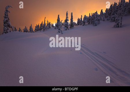 Ski tracks sunset during winter on Wrangell Island in the Tongass National Forest, Alaska - Stock Photo