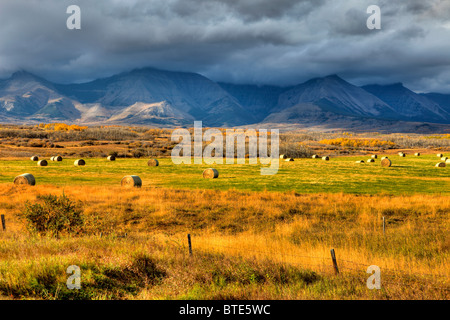Prairies meet the Rocky Mountains, near Waterton Lakes National Park, Alberta, Canada - Stock Photo