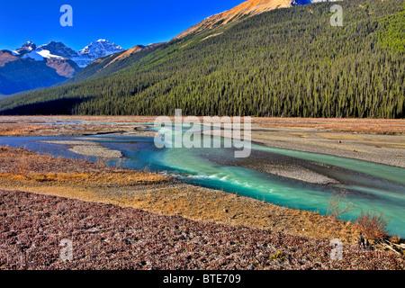 Athabasca River, Jasper National Park, Alberta, Canada - Stock Photo