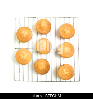 Home baked cupcakes cooling on wire mesh rack from low perspective isolated on white. - Stock Photo