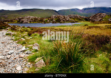 Innominate Tarn on the summit of Haystacks in the Lake District, Cumbria, England, UK - Stock Photo