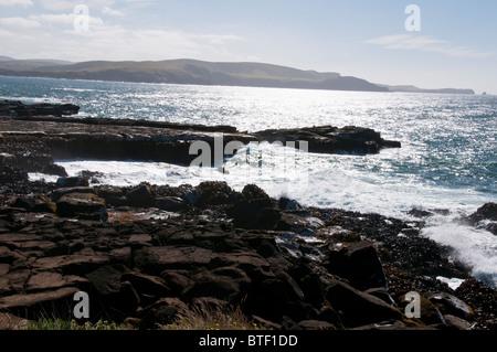 Waipapa Point, Curio Bay,Petrified Fossell Forest On Sea Bed, Waikawa, Porpoise Bay,The Catlins,South Island,New - Stock Photo