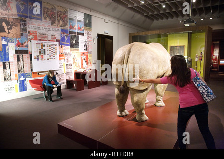 A teenage girl looking at a rhino exhibit, Victoria & Albert Museum, London, UK - Stock Photo