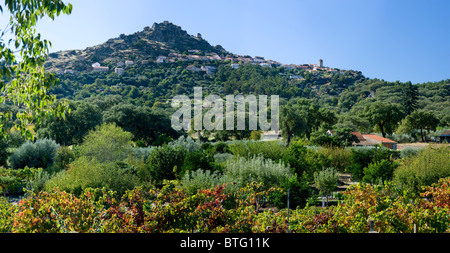 Portugal, Beira Baixa, Monsanto distant view over vineyard, cork and olive trees - Stock Photo