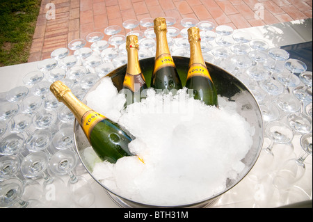 Prosecco wine on ice - Stock Photo