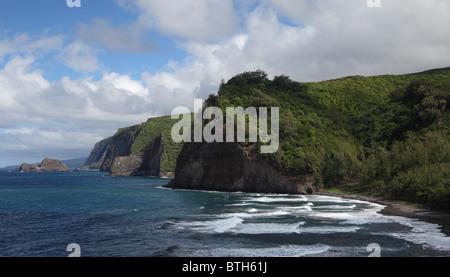 Black sand beach at Pololu Valley and Big Island coastline