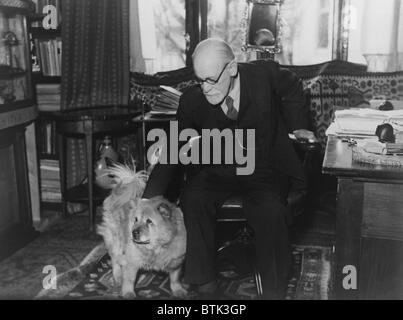 Sigmund Freud (1856-1939), seated in his study with his dog in 1937 photography by Princess Marie Bonaparte who - Stock Photo