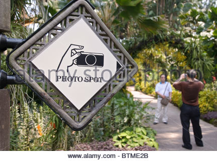 Visitors at a photo spot, Singapore Botanic Gardens, Singapore, Southeast Asia, Asia - Stock Photo