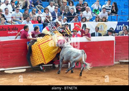 Bull-fight in Plaza de Toros Bull Ring Mexico City. - Stock Photo