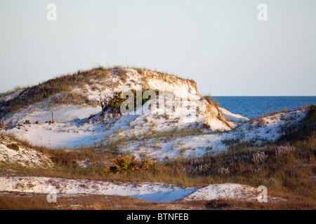 Rolling sand dunes on Florida's Gulf Coast. - Stock Photo