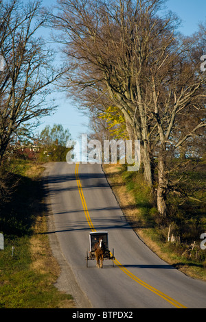 Amish buggy in Stone Arabia, Mohawk Valley, Montgomery County, New York State - Stock Photo