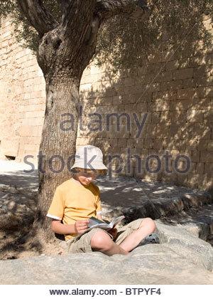 Boy reading book under a tree - Stock Photo