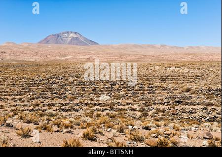 Volcano Miscanti, Atacama salt flat, Atacama Desert, Chile - Stock Photo