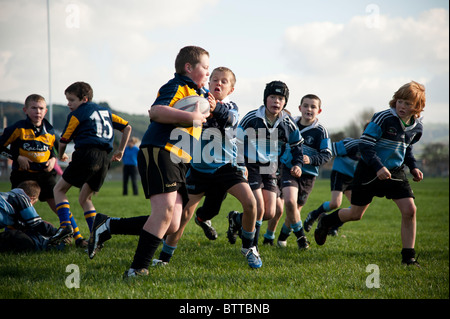 Aberystwyth Rugby Club under 10 years junior players playing the game on a sunday morning, Wales UK - Stock Photo