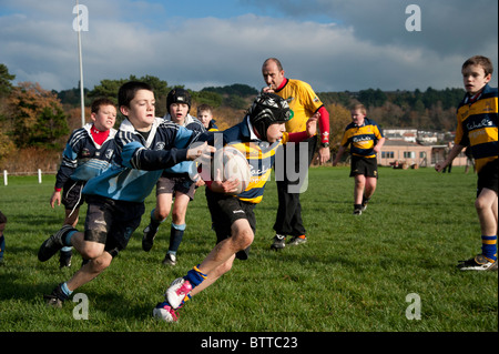 Aberystwyth Rugby Club under 10 years junior boy players playing the game on a sunday morning, Wales UK - Stock Photo