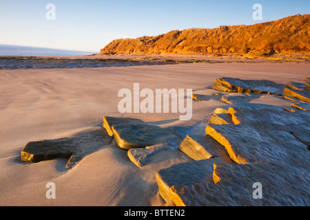 Early-morning light hitting the sandstone rocks that erupt from the sands of Low Hauxley on the Northumberland coast, - Stock Photo