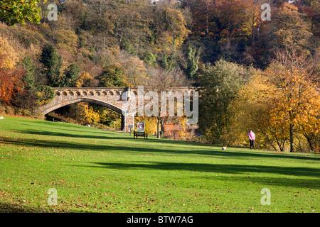 Station Bridge from The Batts Richmond North Yorkshire England - Stock Photo
