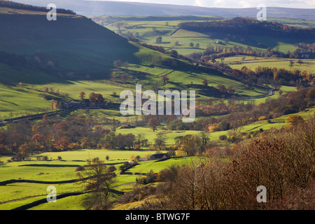 View of Swaledale from Willances Leap Richmond North Yorkshire England - Stock Photo