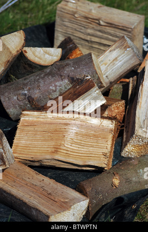 A pile of chopped logs ready for the campfire - Stock Photo