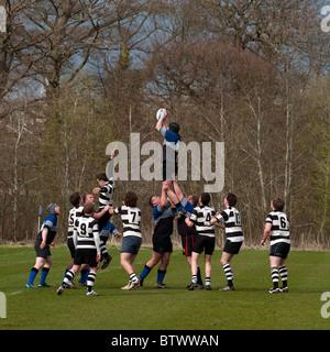 Rugby Union game, Dalziel Rugby Club, Motherwell, Lanarkshire, Scotland, UK, Western Europe. - Stock Photo