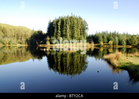 Lake at Bwlch Nant-yr-Arian, Ceredigion, Wales. Well known for its daily Red Kite feeding - Stock Photo