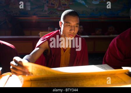 Young Tibetan Buddhist Monk reciting the Sutra in the monastry Vajra Vidhya Institute, Sarnath, Uttar Pradesh, India. - Stock Photo