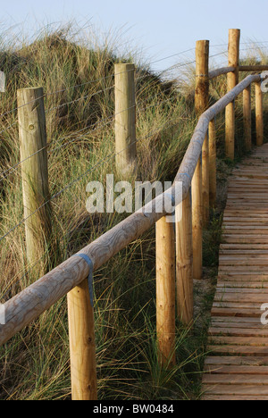 Wooden footpath acros the dunes at the West Beach, Littlehampton,West Sussex,UK - Stock Photo