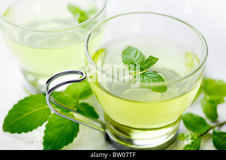 closeup of fresh mint tea, surrounded by fresh mint - Stock Photo